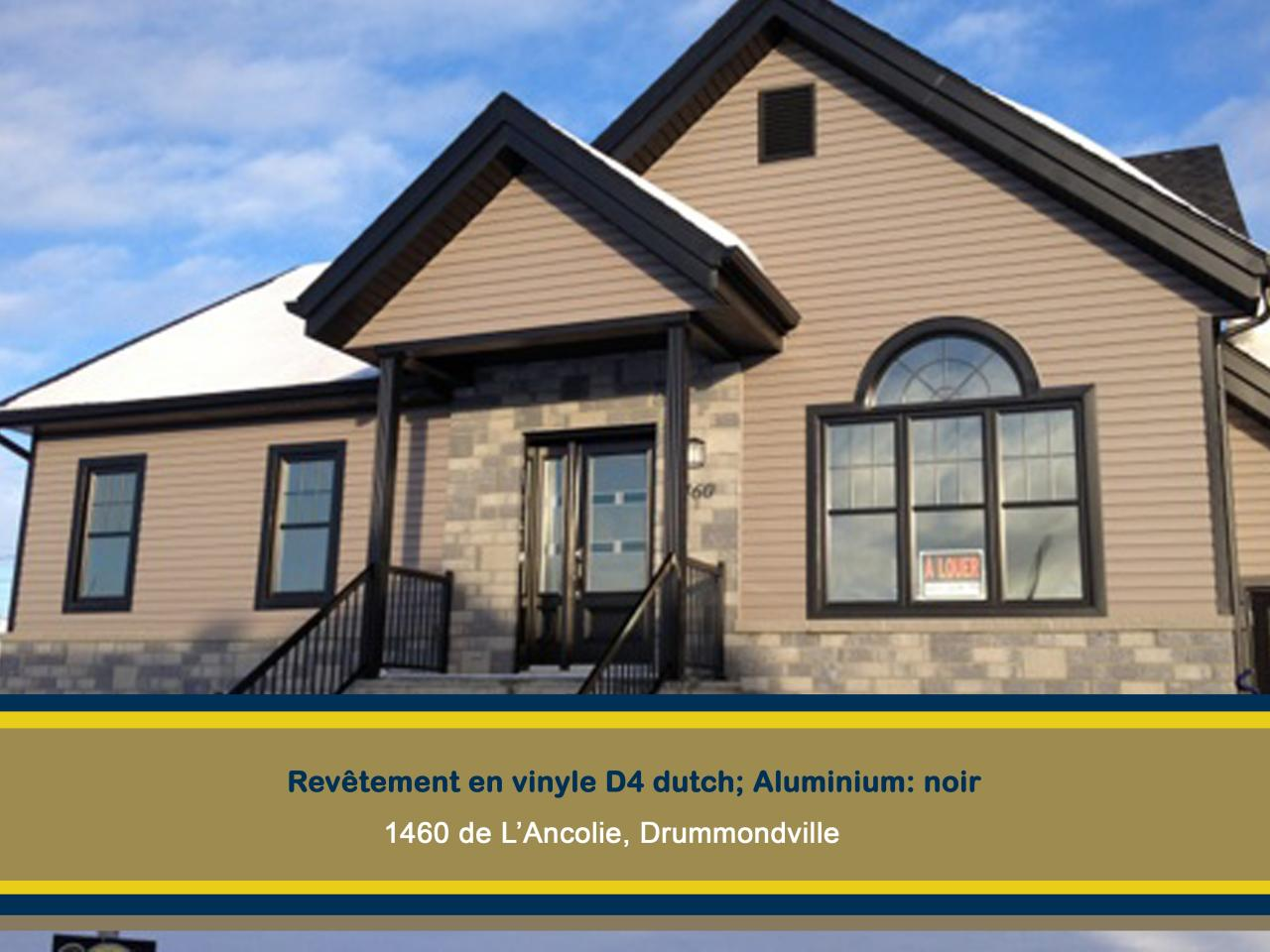 vinyle1460 de l'Ancolie-Drummondville