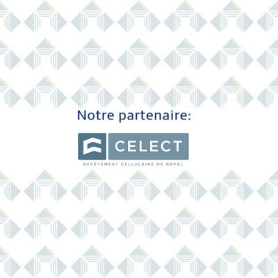 Celect 1